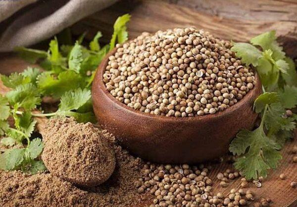 Ketumbar Seeds